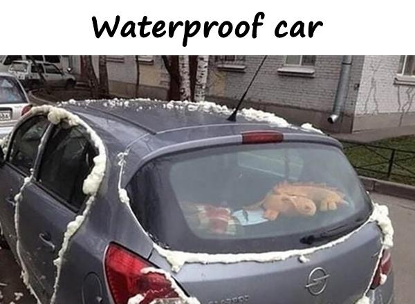 Waterproof car