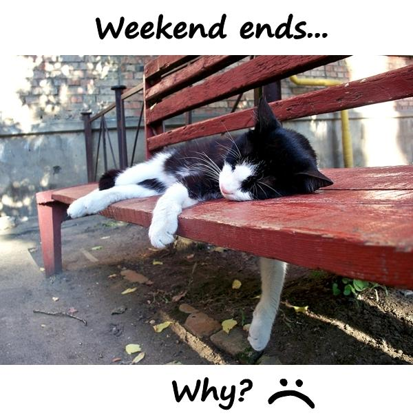 Weekend ends... Why? :(