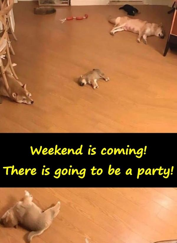 Weekend is coming! There is going to be a party!