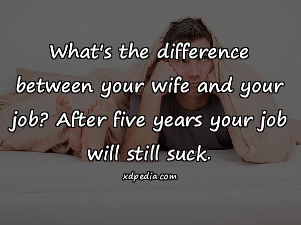 What's the difference between your wife and your job? After five years your job will still suck.