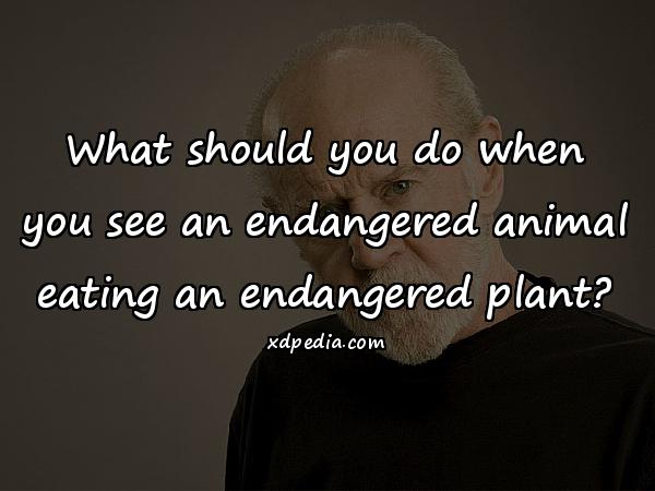 What should you do when you see an endangered animal eating an endangered plant?