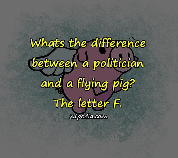 Whats the difference between a politician and a flying pig? The letter F.