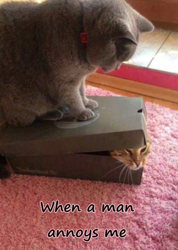 When a man annoys me