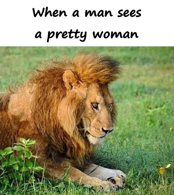 When a man sees a pretty woman