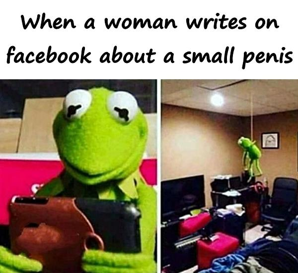 When a woman writes on facebook about a small penis