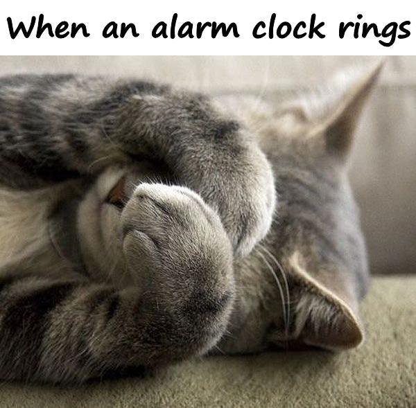 When an alarm clock rings