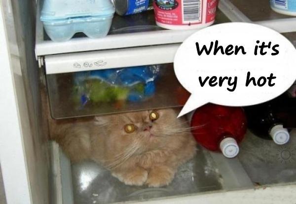 When it's very hot