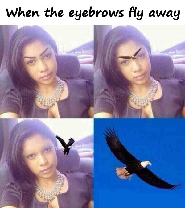 When the eyebrows fly away