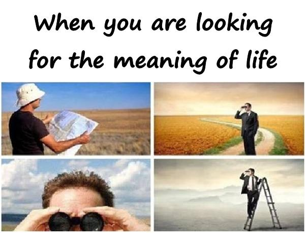 When you are looking for the meaning of life