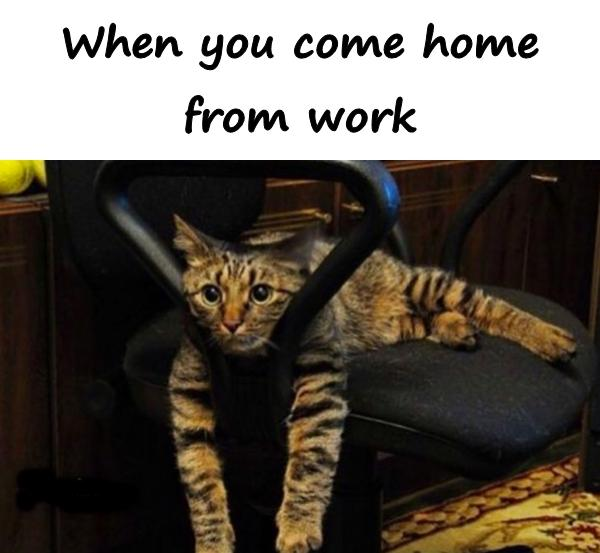When you come home from work