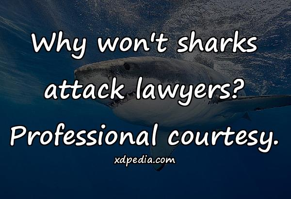 Why won't sharks attack lawyers? Professional courtesy.