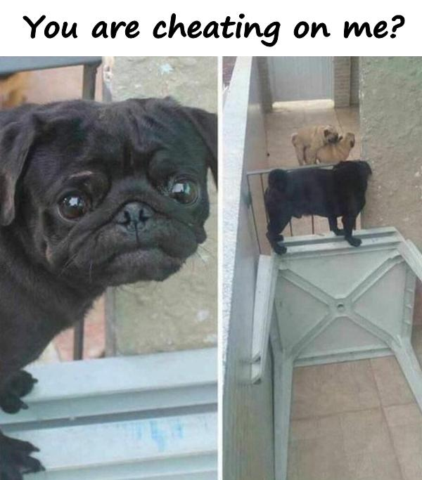 You are cheating on me?