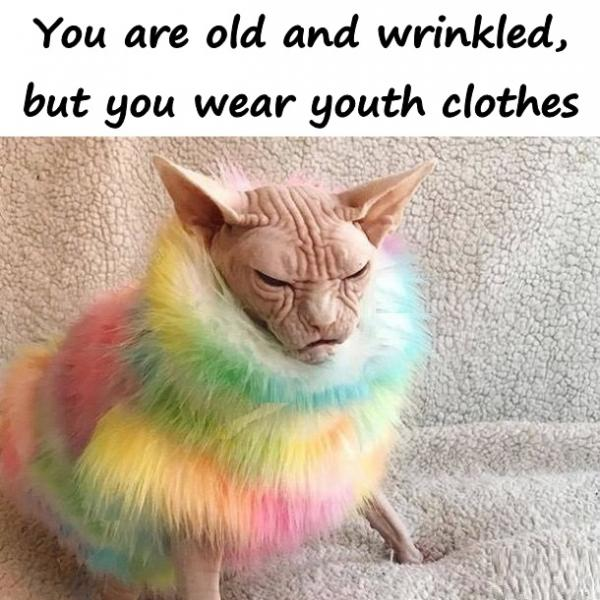 You are old and wrinkled, but you wear youth clothes.