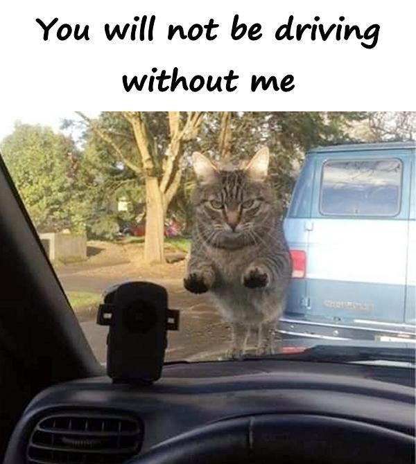 You will not be driving without me