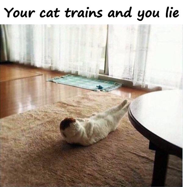 Your cat trains and you lie