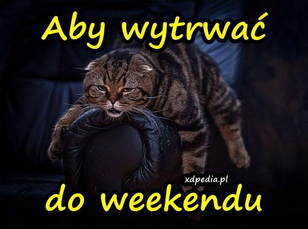 Aby wytrwać do weekendu