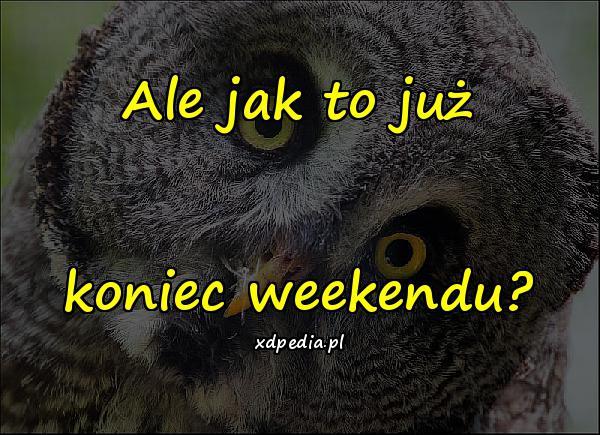 Ale jak to już koniec weekendu?