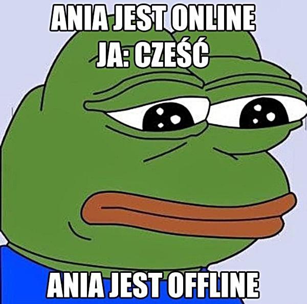 Ania jest online. Ja: Cześć! Ania jest ofline.