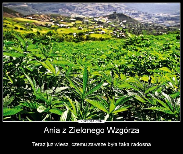 Ania z Zielonego Wzgórza Teraz już wiesz, czemu zawsze była taka radosna