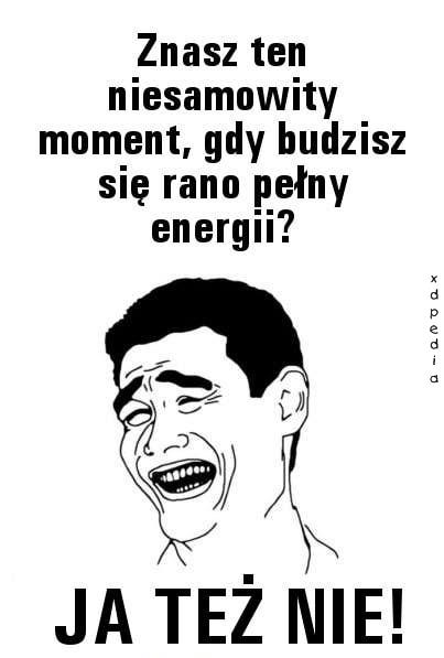Znasz ten niesamowity moment, gdy budzisz się rano pełny energii? Ja też nie!