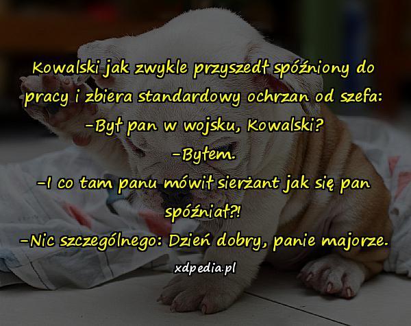 http://www.xdpedia.com/obrazki/byl_pan_w_wojsku_kowalski_19080.jpg