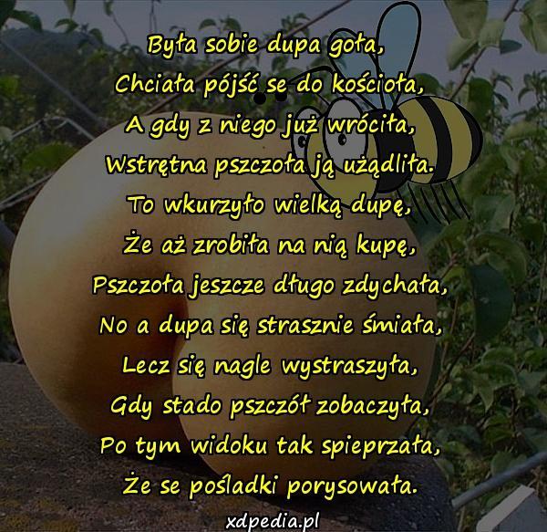 Była sobie dupa goła, Chciała pójść se do kościoła, A gdy z niego już wróciła, Wstrętna pszczoła ją użądliła. To wkurzyło wielką dupę, Że aż zrobiła na nią kupę, Pszczoła jeszcze długo zdychała, No a dupa się strasznie śmiała, Lecz się nagle wystraszyła, Gdy stado pszczół zobaczyła, Po tym widoku tak spieprzała, Że se pośladki porysowała.