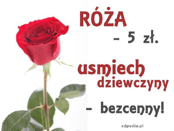 Róża - 5zł, uśmiech dziewczyny bezcenny!