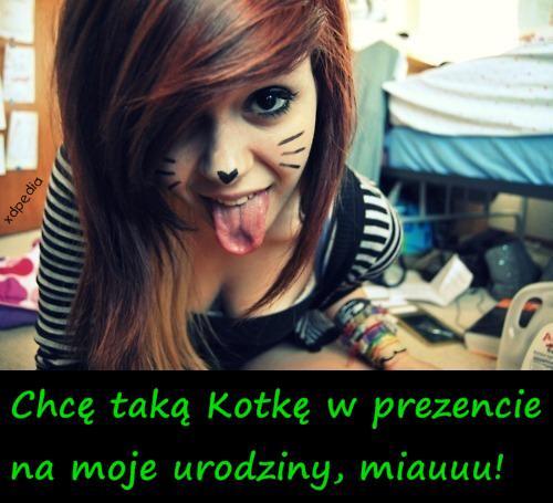 Chcę taką Kotkę w prezencie na moje urodziny, miauuu!