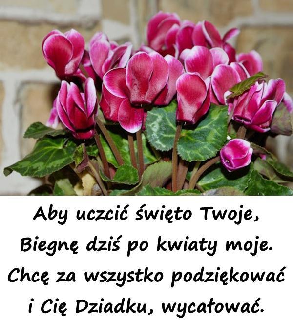 Aby uczcić święto Twoje, Biegnę dziś po kwiaty moje. Chcę za wszystko podziękować i Cię Dziadku, wycałować.