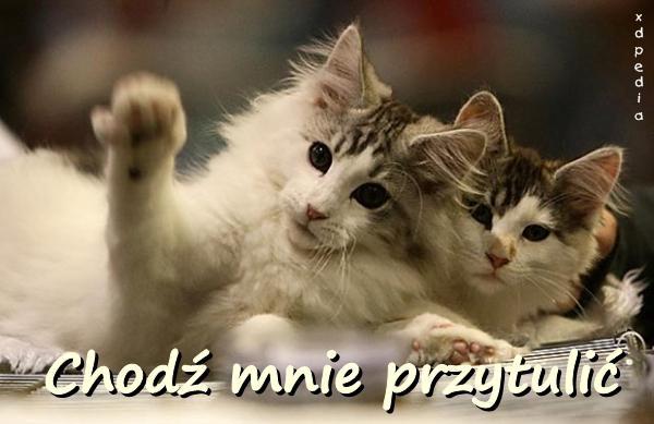 Chodź mnie przytulić