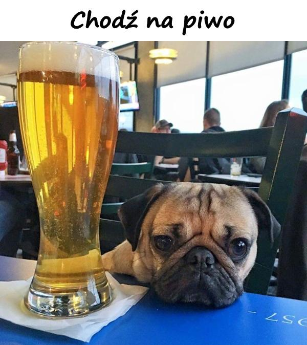 Chodź na piwo