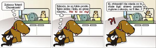 Pies: zobacz Totek Chomiczek! Kot: Szkoda, że są takie proste. Tylko jedzą i śpią, za grosz rozumu.... Nie to co my! Chomik: Ej, chłopaki! Nie wiecie co to może być: drzewo polskie, mylone z akacją, na 11 liter...? Chłopaki: ?! xD
