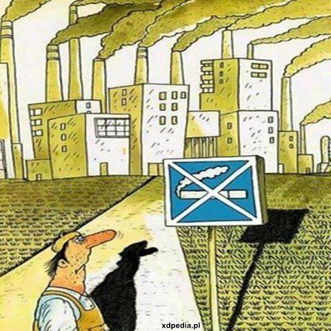Chroń przyrodę - Tu nie wolno palić!