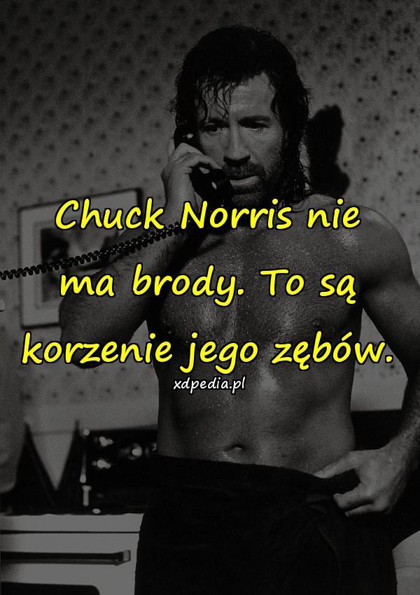 Chuck Norris nie ma brody. To są korzenie jego zębów.