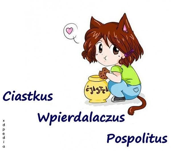 Ciastkus Wpierdalaczus Pospolitus