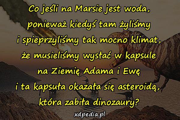 Co jeśli na Marsie jest woda, ponieważ kiedyś tam żyliśmy i spieprzyliśmy tak mocno klimat, że musieliśmy wysłać w kapsule na Ziemię Adama i Ewę i ta kapsuła okazała się asteroidą, która zabiła dinozaury?