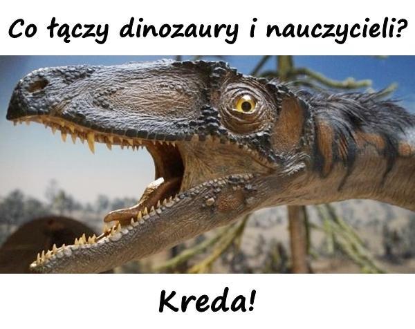 Co łączy dinozaury i nauczycieli? Kreda!