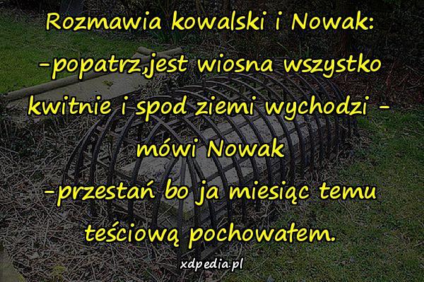 Rozmawia kowalski i Nowak: -popatrz,jest wiosna wszystko kwitnie i spod ziemi wychodzi - mówi Nowak -przestań bo ja miesiąc temu teściową pochowałem.