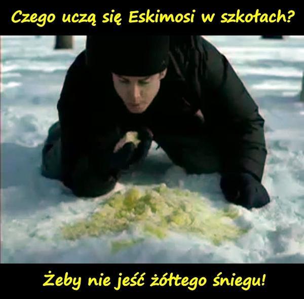 Czego uczą się Eskimosi w szkołach? Żeby nie jeść żółtego śniegu!