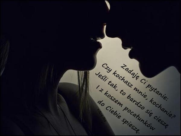 Zadaję Ci pytanie: Czy kochasz mnie, kochanie? Jeśli tak, to bardzo się cieszę I z koszem pocałunków do Ciebie spieszę.