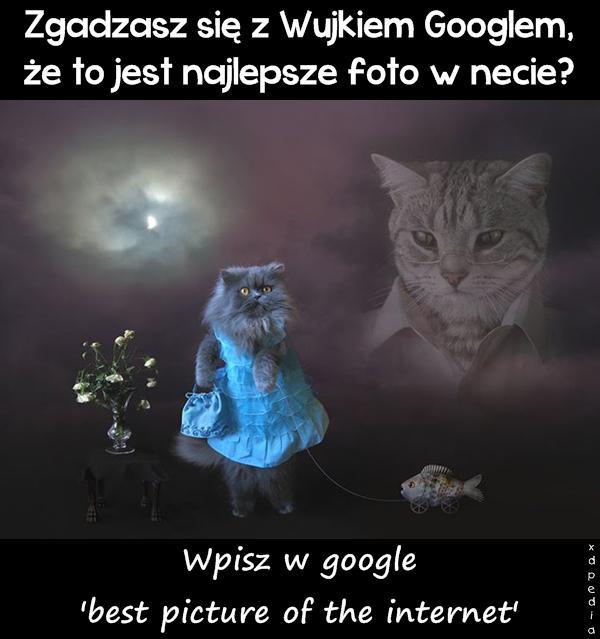 Zgadzasz się z Wujkiem Googlem, że to jest najlepsze foto w necie? Wpisz w google: best picture of the internet