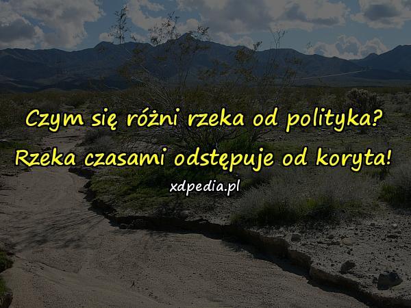 Czym się różni rzeka od polityka? Rzeka czasami odstępuje od koryta!