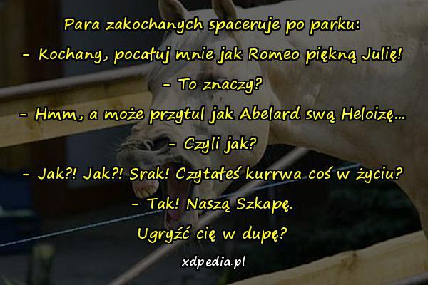 Para zakochanych spaceruje po parku: - Kochany, pocałuj mnie jak Romeo piękną Julię! - To znaczy? - Hmm, a może przytul jak Abelard swą Heloizę... - Czyli jak? - Jak?! Jak?! Srak! Czytałeś kurrwa coś w życiu? - Tak! Naszą Szkapę. Ugryźć cię w dupę?