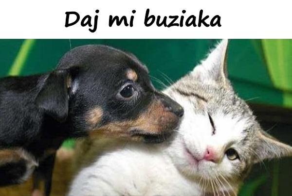 Daj mi buziaka