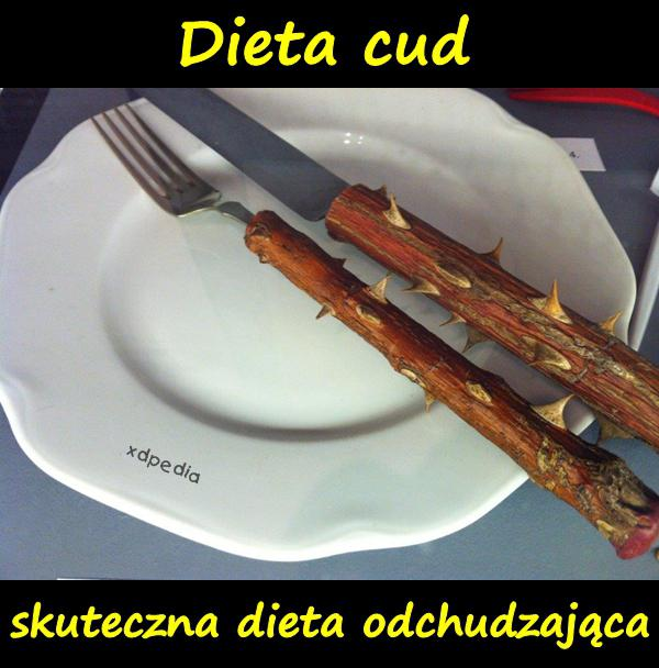 Dieta cud - skuteczna dieta odchudzająca