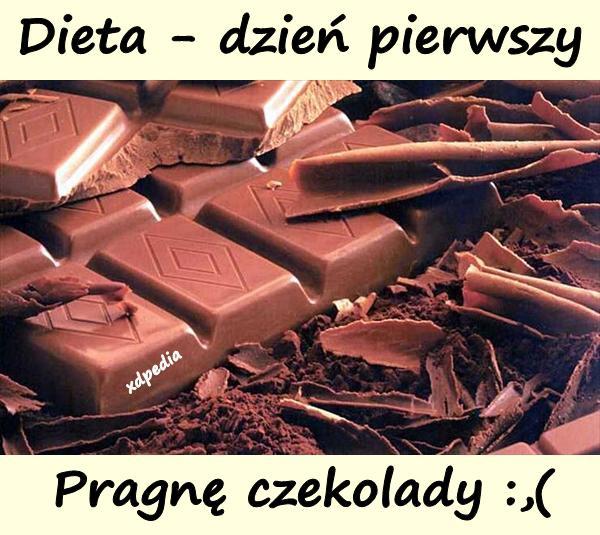 Dieta - dzień pierwszy. Pragnę czekolady :,(
