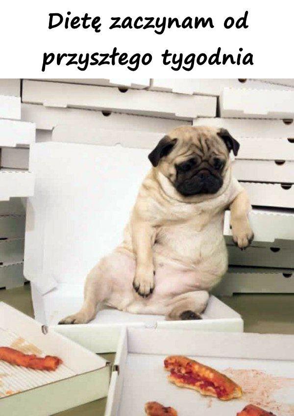 Dietę zaczynam od przyszłego tygodnia