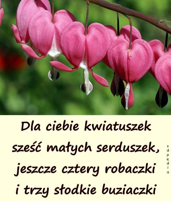 Dla ciebie kwiatuszek sześć małych serduszek, jeszcze cztery robaczki i trzy słodkie buziaczki