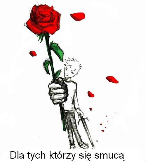 Oto róża dla tych, którzy się smucą.