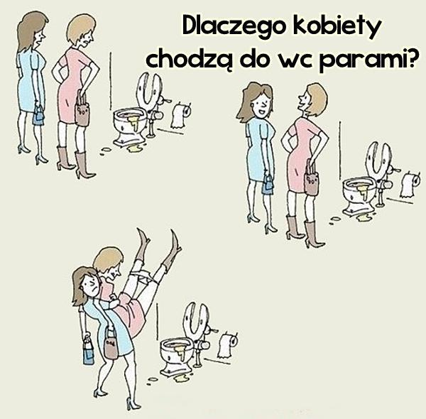 Dlatego kobiety chodzą do wc parami.